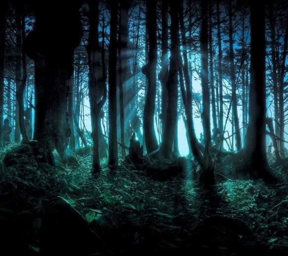 amazing-forest-night-nightmare-favim-com-1075372